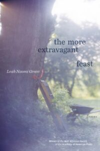 Book Cover for, The More Extravagant Feast