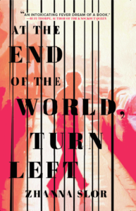 """Book cover for, """"At the End of The World, Turn Left"""" by Zhanna Slor"""